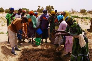 RCA. Solidarités appuie le renouveau agricole