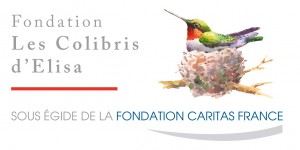LOGO_FONDATION_COLIBRIS_ELISA_CMJN_VECTO
